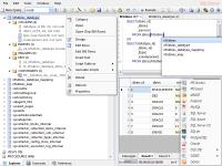 Database .NET 4.7.4167