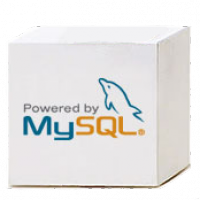 MySQL 5.5.13
