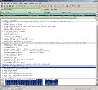 Содержимое пакета ответа HTTP с PNG-картинкой